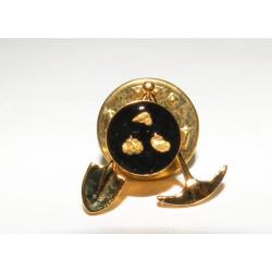 Pins Panier chercheur d or avec de vrais pépites d or
