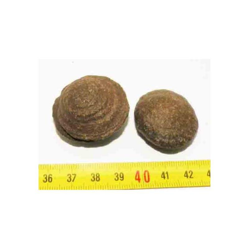 2 Moqui Marble, pierre des shamans ( 001 )