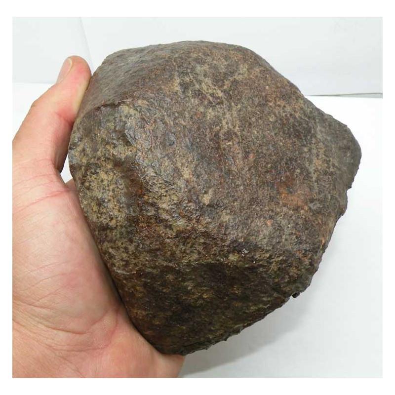 Meteorite Chondrite NWA non classée ( 1847 grs - Abde 033 )