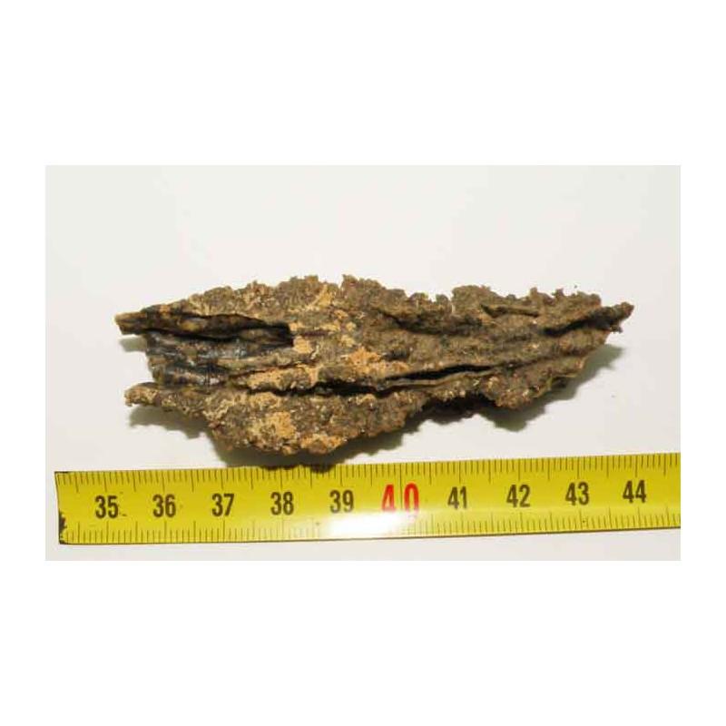 Fulgurite ( meteorite Tectite - 33 )