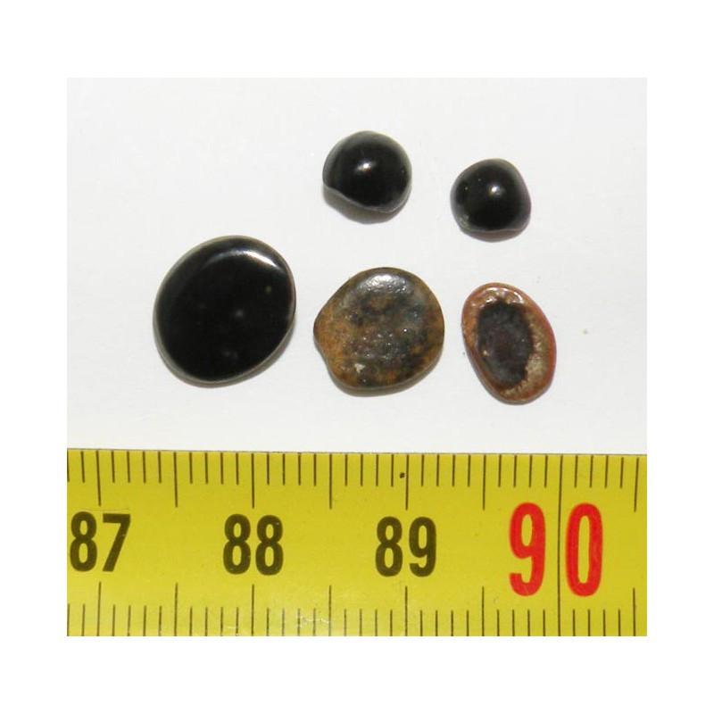 lot de 5 dents fossiles de Dorade ( Faluns - 002 )