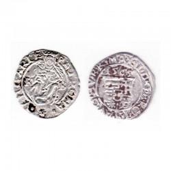 Denier Argent Crest 1565 Hongrie ( 6)