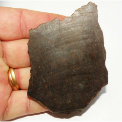 Tranche de Chondrite NWA non classée ( 33 grammes  )