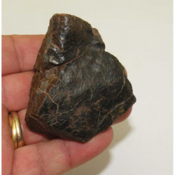 Chondrite NWA non classée ( 176 grammes - 188 )