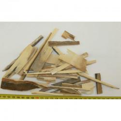 Morceaux de defence Mammouth laineux ( 100 grs - 003 )
