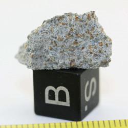 Talon de météorite Zhob...