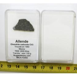 Tranche de météorite...