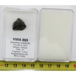 Météorite NWA 869 dans une...