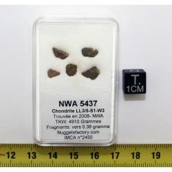 lot de Météorite NWA 5437...