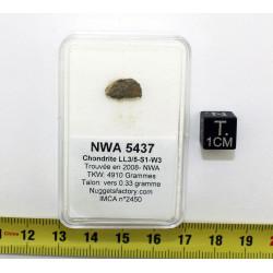 Talon de Météorite NWA 5437...