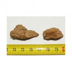 lot de 2  Meteorites Jiddat Al Harasis 055 (JAH 055 - 13.05 grs - 015)