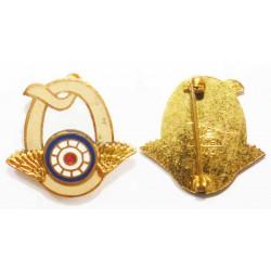 insigne USA Army  ( 043 * )