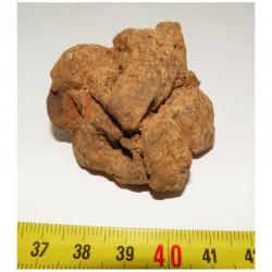 Meteorite NWA 4420 ( Achondrite - 72 grams - 017 )