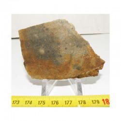 Tranche de Meteorite NWA 4420 ( Achondrite - 185 grams - 040  )