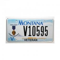 Plaque d Immatriculation USA - Montana ( 331 )