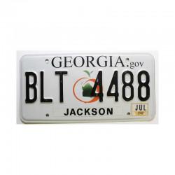 Plaque d Immatriculation USA - Georgia ( 409 )