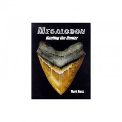 Megalodon Chassez le chasseur