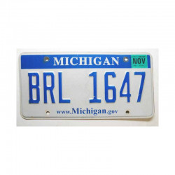 Plaque d Immatriculation USA - Michigan ( 503 )