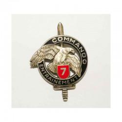 Insigne 7 ° centre commando ( 043 )
