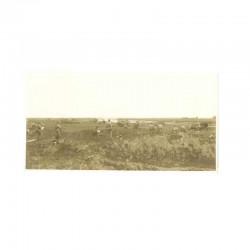 WWII Photo de soldat Japonais - guerre de Russie ( 185 )