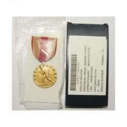 Decoration / Medaille USA Marine corps ( B-008 )