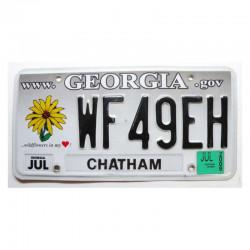 Plaque d Immatriculation USA - Georgia ( 954 )
