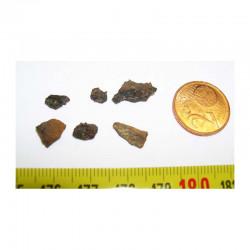 Meteorite Pallasovka - Pallasite ( 2.00 grs - 003 )