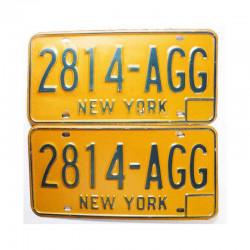 paire de Plaques d Immatriculation USA - New York ( 029 )