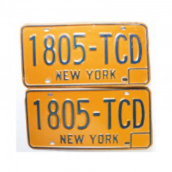 paire de Plaques d Immatriculation USA - New York ( 028 )