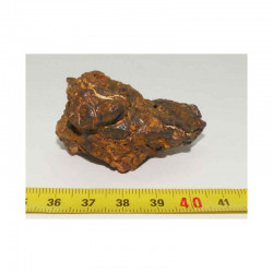Meteorites Nantan Chine ( IIICD - 61.30 grs - 014 )