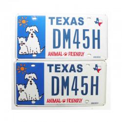 Paire de Plaque d Immatriculation USA - Texas ( 038 )