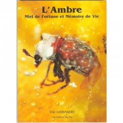 L'Ambre miel de fortune et mémoire de vie : La Bible !