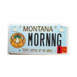 Plaque d Immatriculation USA - Montana ( 912 )