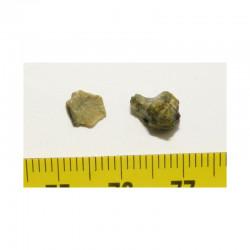 lot de Tatahouine ( meteorite - 0.45 grs - 021)