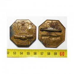 Allemagne / 3 iem Reich - Insigne Deutsch ist die Saar 1934  ( 008 )