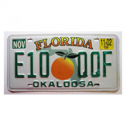 Plaque d Immatriculation USA - Florida ( 1169 )