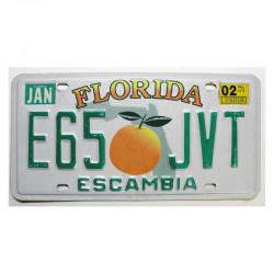 Plaque d Immatriculation USA - Florida ( 1164 )