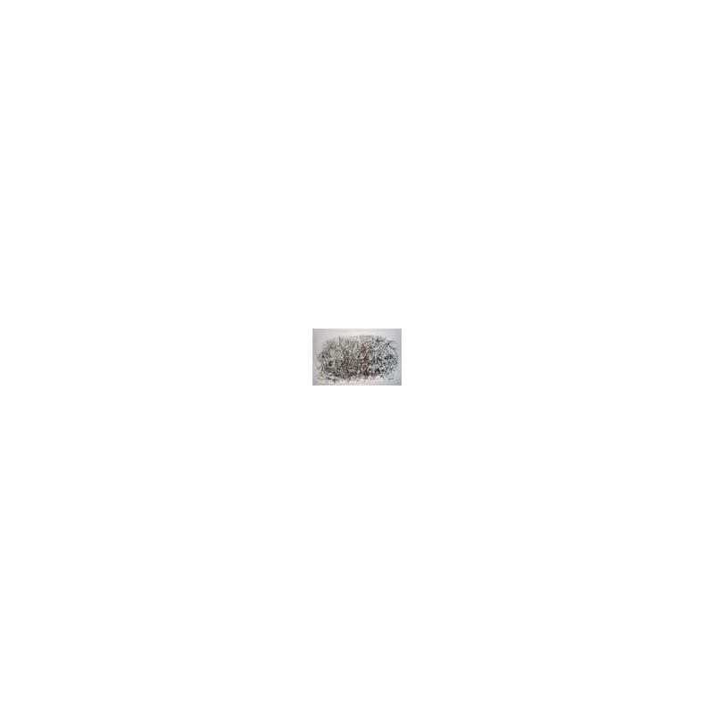 Lavis encre de chine original de Todorovitch ( 143 )