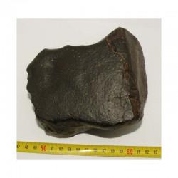 Meteorite NWA non classée ( 2030 grs - Abde  )